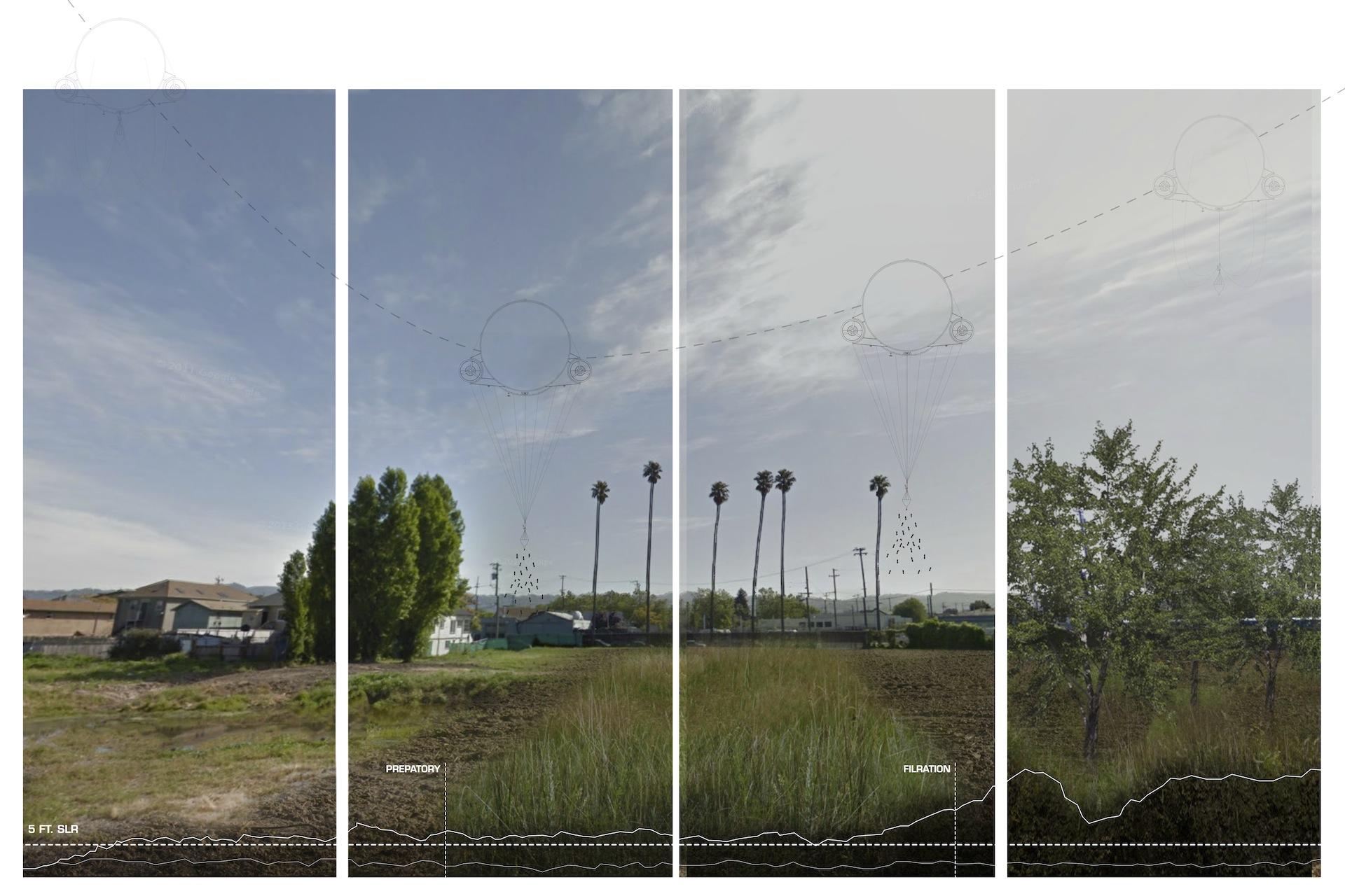 Meadow - Forest Scenario Board